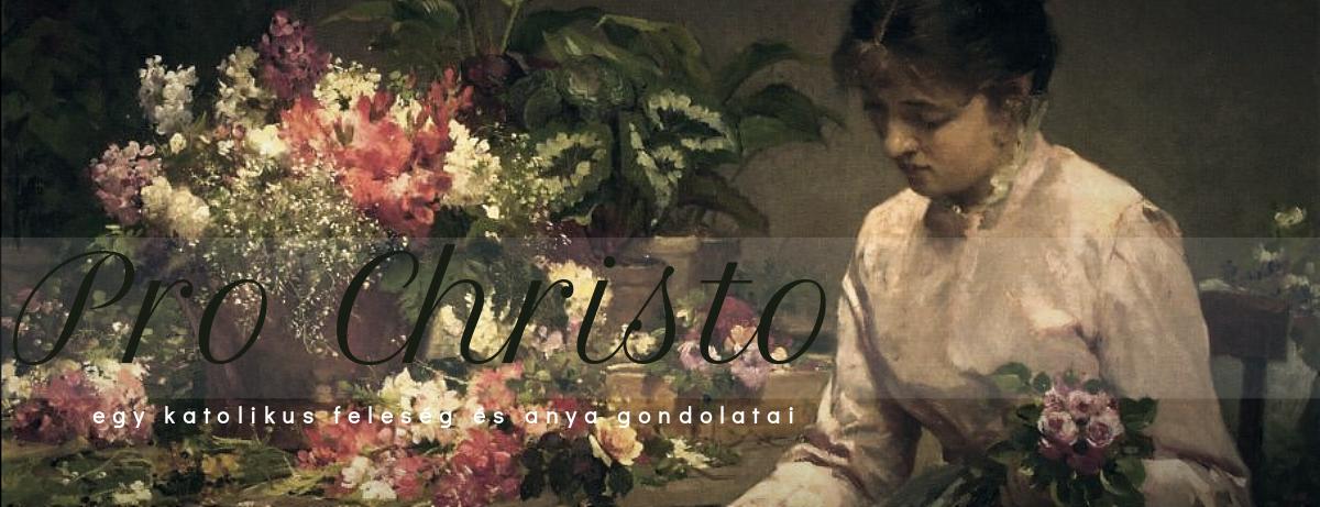 Pro Christo - egy katolikus feleség és anya gondolatai