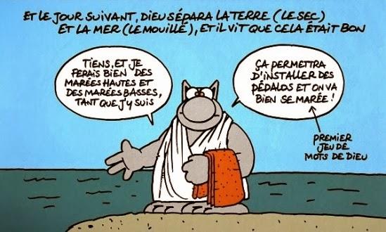 chat de femme Saint-Malo