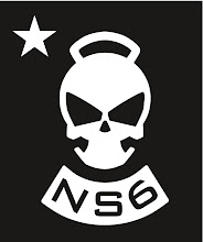 NS6 Skully Logo