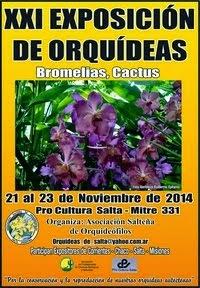 Exposición en Salta