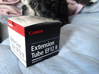 Canon 『EF12II』を手に入れた.これで擬似マクロ撮影ができる!