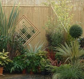 Bamboo Fence Style Design
