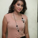 Bhanu Sri Hot Photos at Veedi Pourusham Movie Press Meet 7
