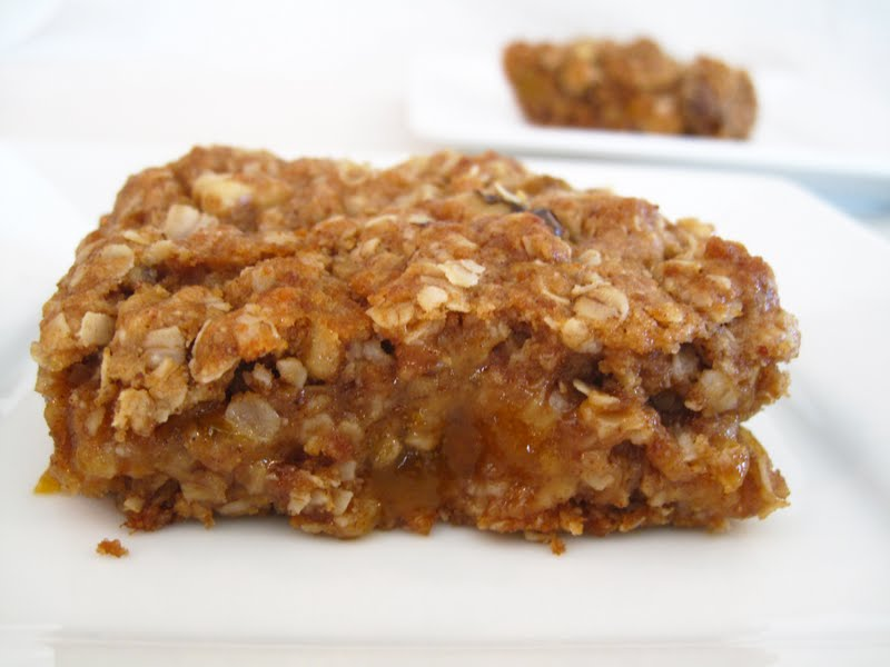 Apricot Oat Bars - Natural Sweet Recipes