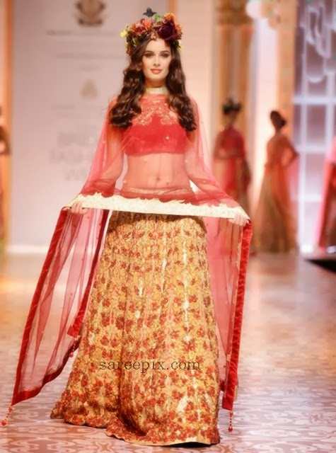 Evelyn-sharma-IBFW-2013