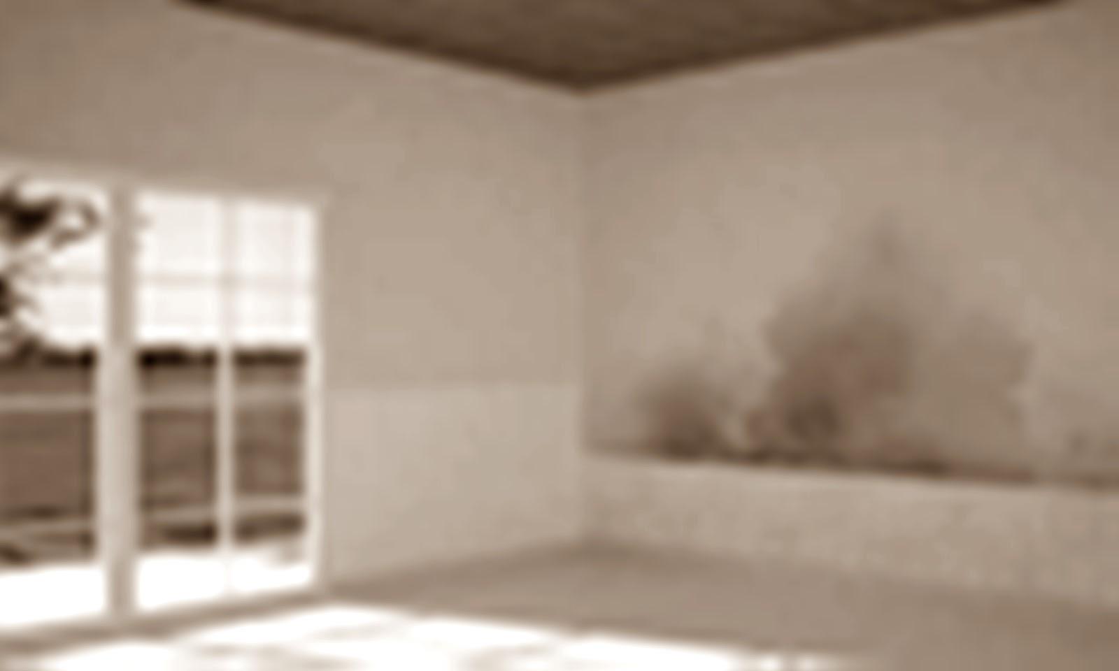 Pintura aislante termico y acustico - Microesferas ceramicas para pintura ...