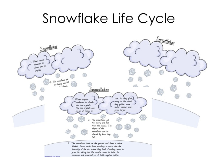 Friday Freebie - Snowflake Life Cycle - A Moment in our World
