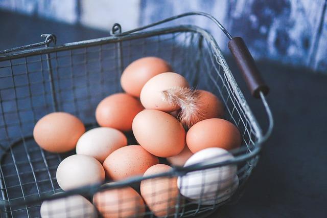 Telur