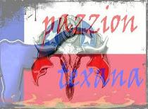 Pazzion Texana