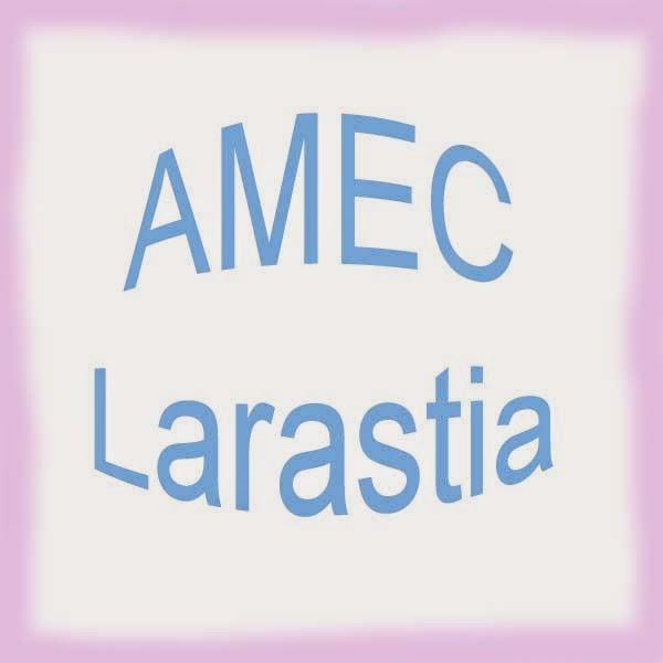 Job Vacancy At AMEC Larastia Sdn Bhd