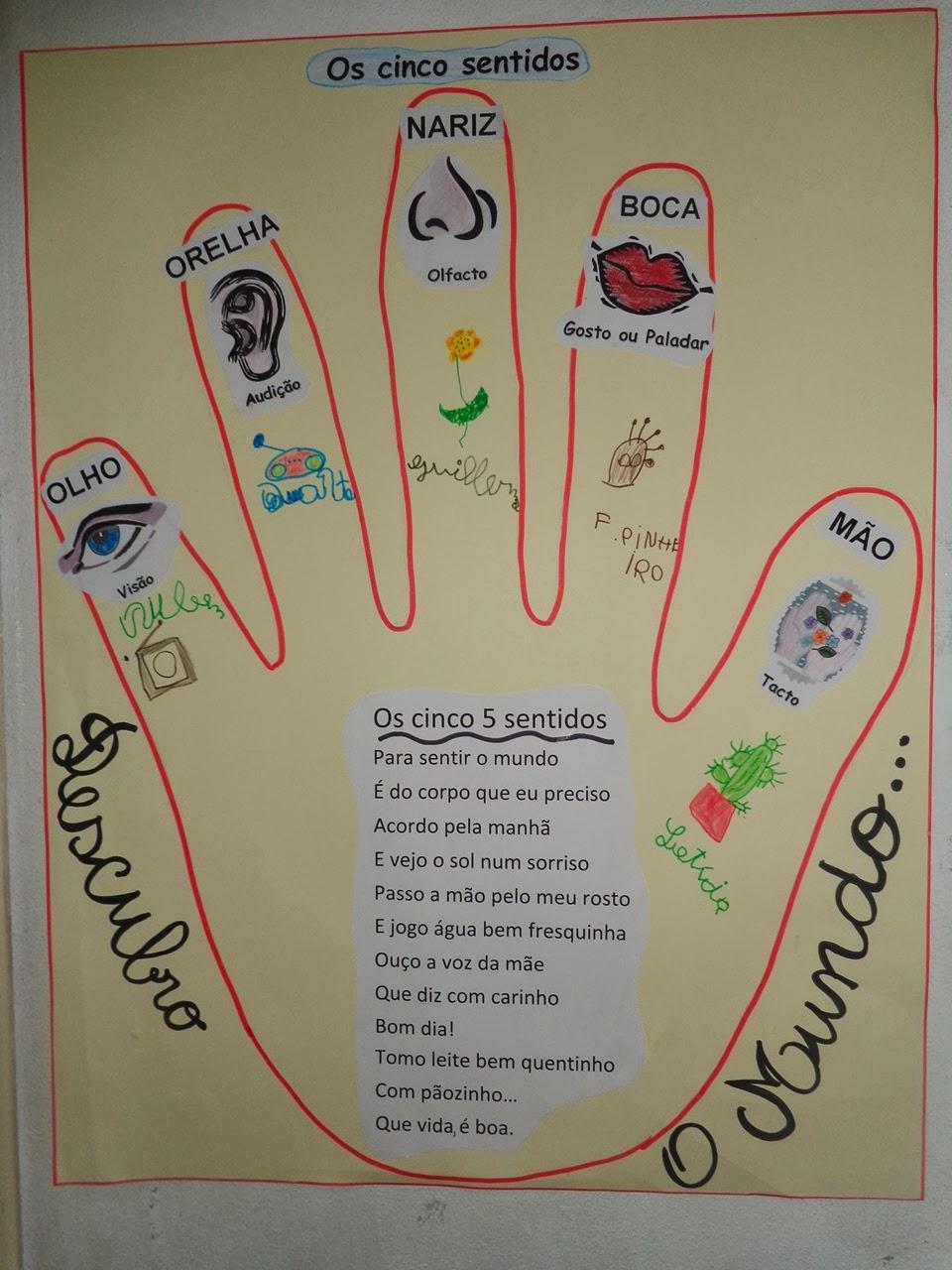 O nosso dia explora o do 5 sentidos for Mural de los 5 sentidos