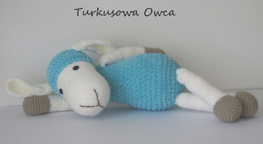 Turkusowa Owca