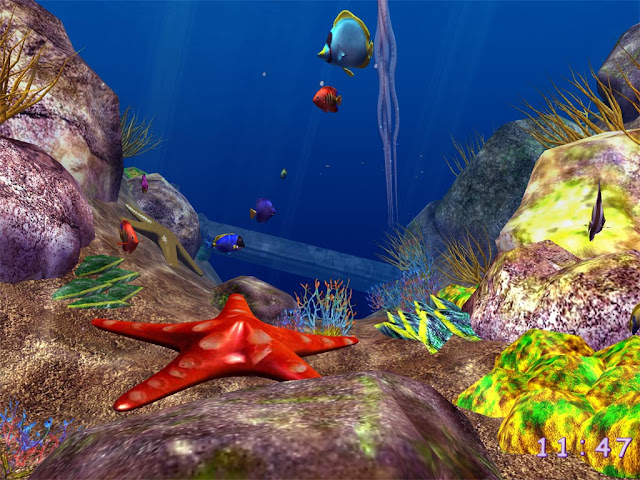 3d Fish Screensaver