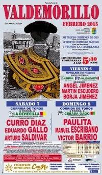 VALDEMORILLO (MADRID) FERIA TAURINA 2015.