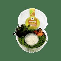 Medley Salad + Tartar Dressing