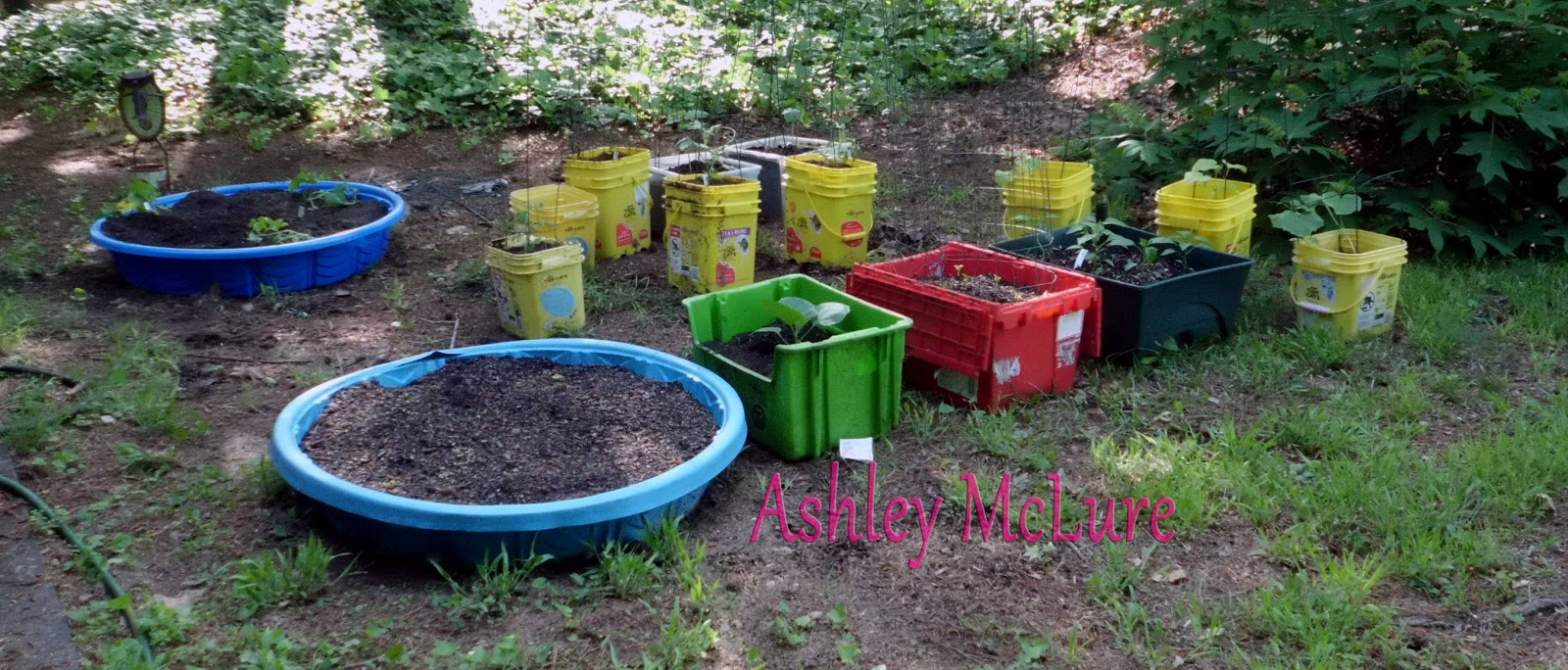 Ashley 39 s random blog recycled container garden - Recycled containers for gardening ...