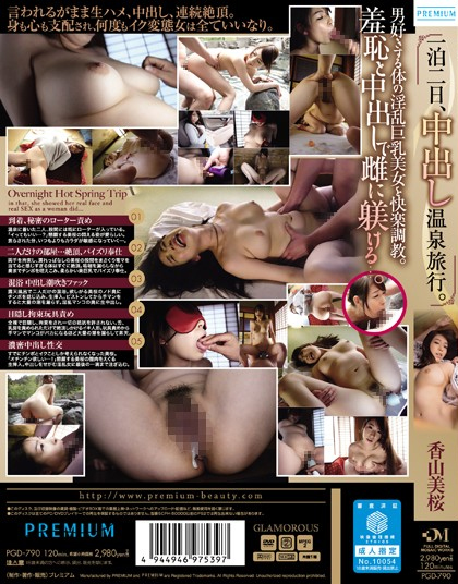 PGD-790 One Night The 2nd, Pies Hot Spring Trip. Kayama Yoshisakura