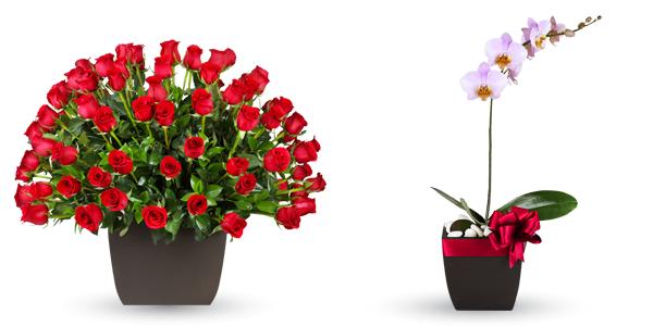 rosas y orquídea