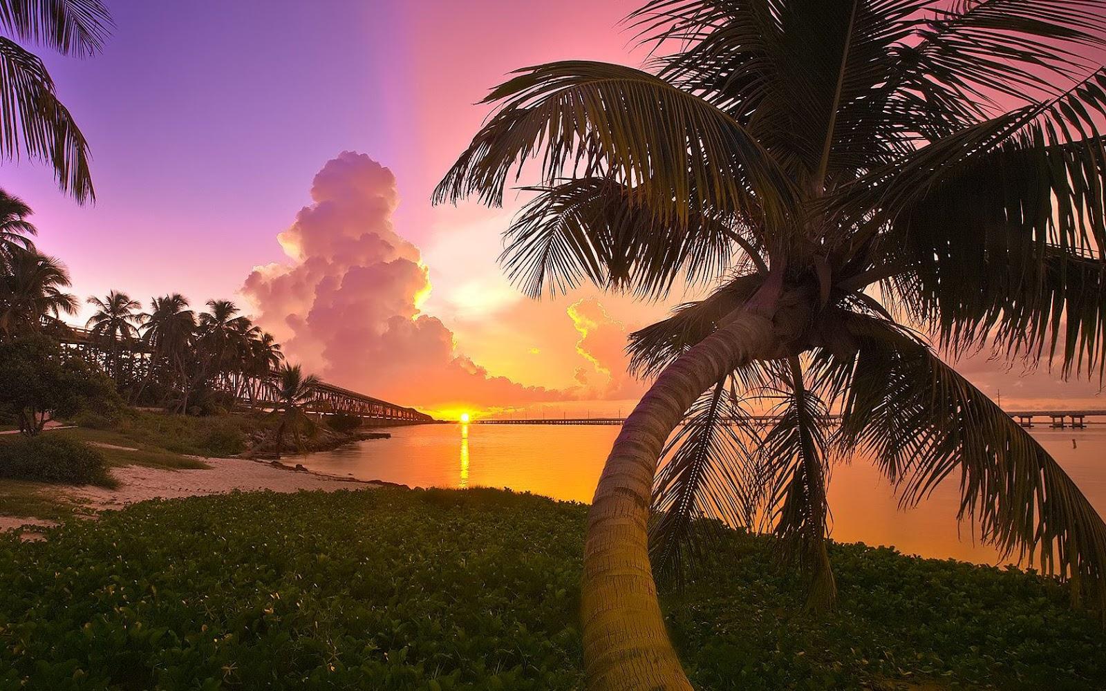 http://1.bp.blogspot.com/-A4F6Hck9O3c/T6RwvpUoSEI/AAAAAAAAdpg/qt5bIlWLrPE/s1600/Bahia+Honda+State+Park+Key+West+Florida.jpg