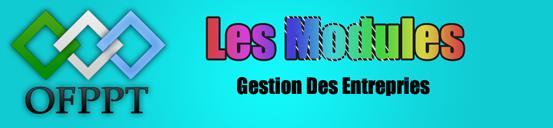 Les modules de la 1ere & 2eme année TSGE Les+cours+TSGE
