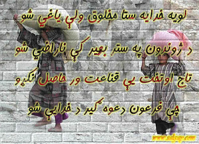 New Pashto poetry Loya Khudaya stah makhlok Wali baghi Sho