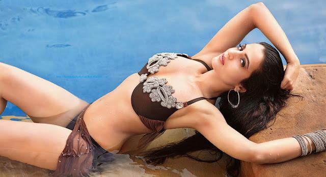 katrina kaif, katrina, bollywood actress, indian actress, katrina kaifs photo gallery, pic of katrina kaif