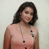 Bhanu Sri Hot Photos at Veedi Pourusham Movie Press Meet 9
