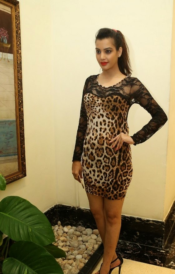 Deeksha Panth in Leoperd Print Leotard Transparent Net Neck at Ee Varsham Saksiga Audio Launch