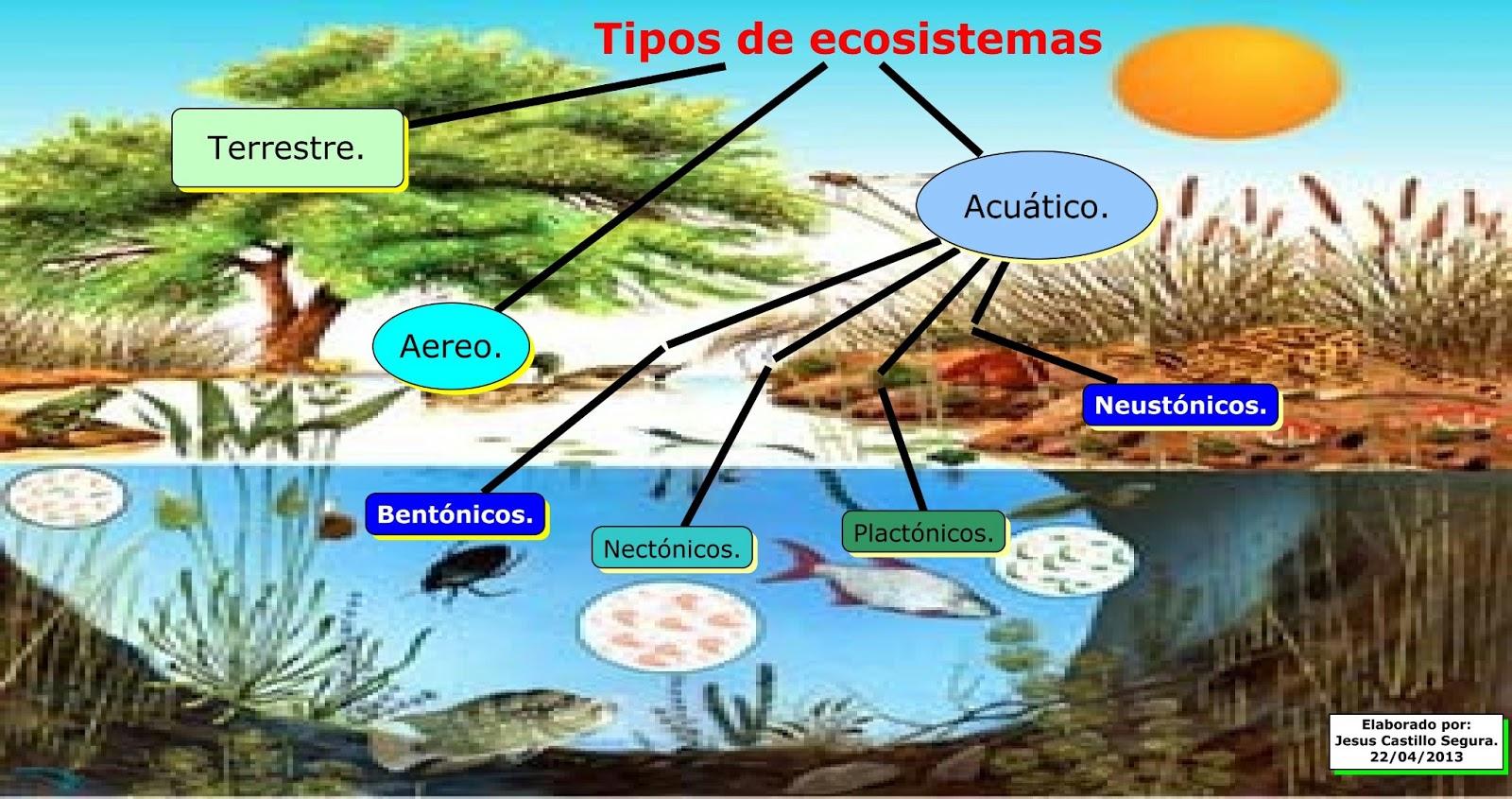 Maestro San Blas: Ecosistemas
