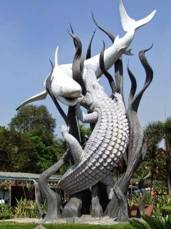 Agen Susu ProVit SNS 21 Surabaya