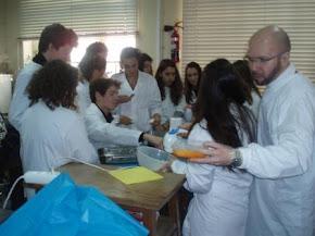 Aula prática - Identificação e desnaturação de proteínas