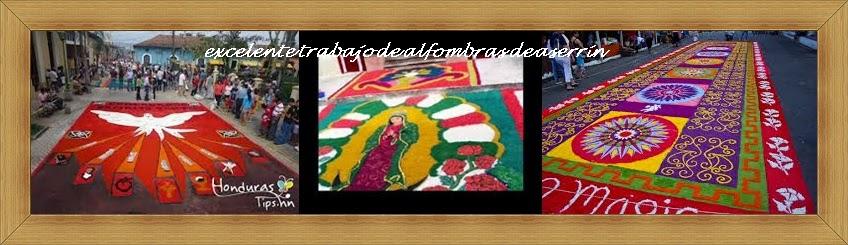 trabajo-terminado-distribucion-esparcimiento-pintura-seleccion-aserrin-venta-maderas-cuale-vallarta-elaboracion-alfombra