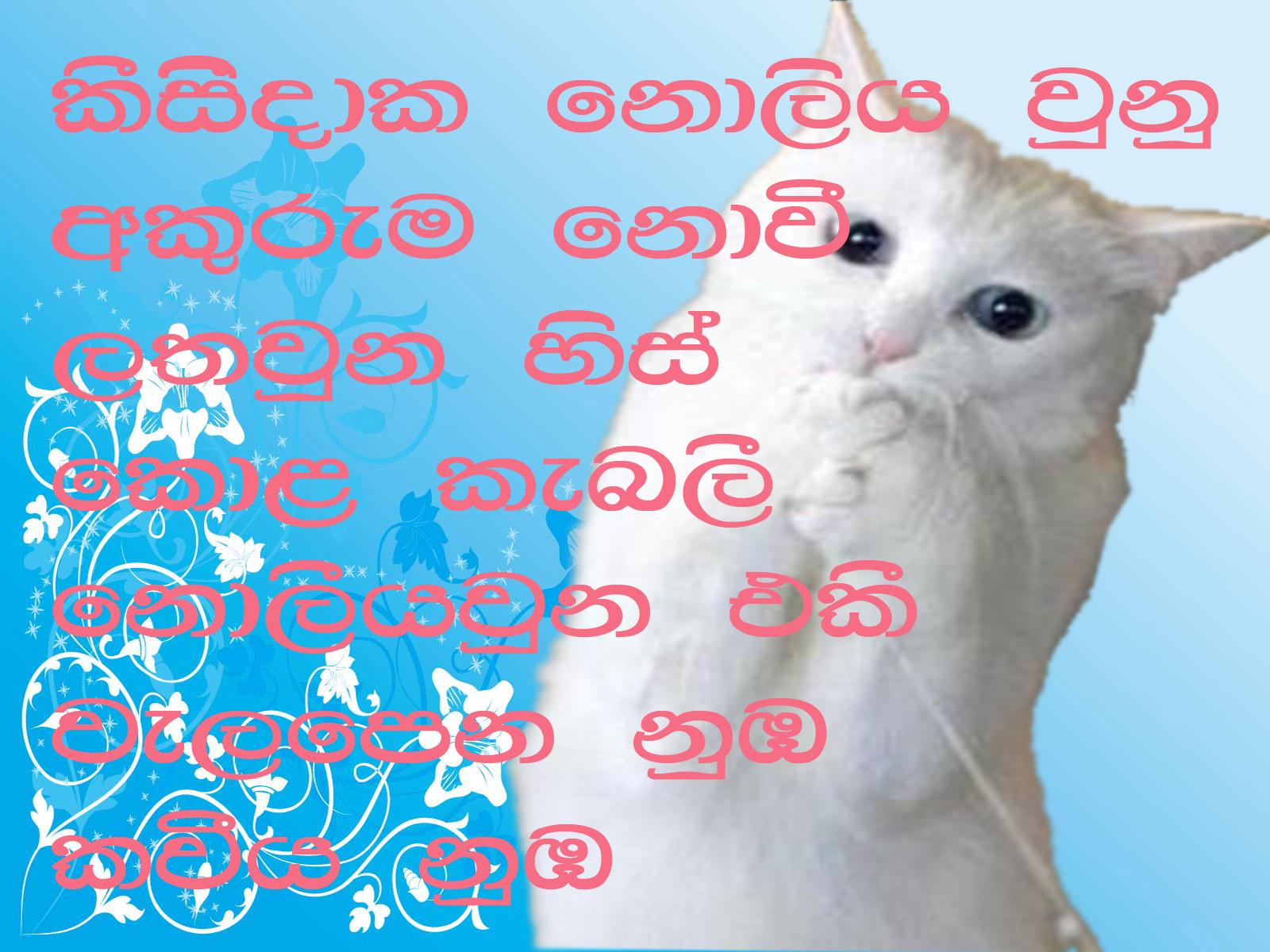 Love+Poem+Sinhala Sinhala Poem: August 2011