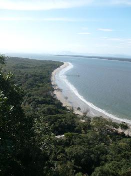 Saída de Campo Ilha do Mel - 08/11