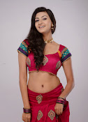Neelam Upadhyay latest Hot Photos-thumbnail-8