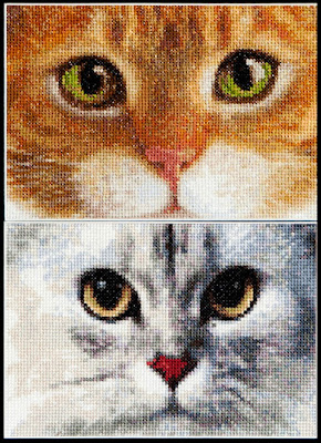 Thea Gouverneur, Tiger + Kitty