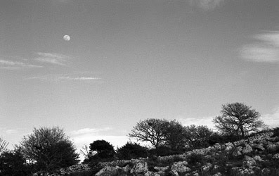 Progetto vajra perle nel tempo immagini foto art gallery incontri meditazione contemplazione zen luna