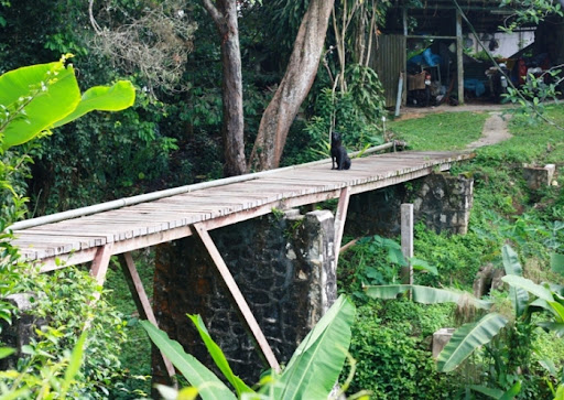 wooden bridge to uplands school on penang hill