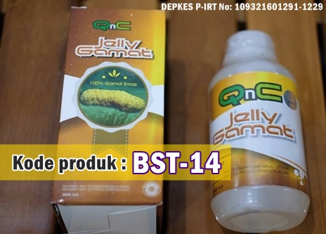 Obat Jelly Gamat QnC