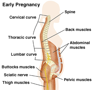 sharp right side pain pregnancy - MedHelp. Pain during pregnancy: upper back ...