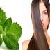 Beneficios de la hoja de menta para el pelo