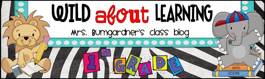 Mrs. Bumgardner's 1st Grade Class