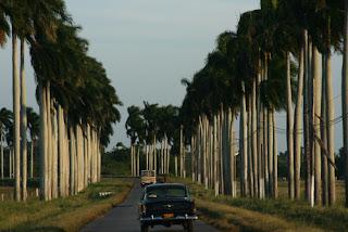 entrada a Unión de Reyes Cuba