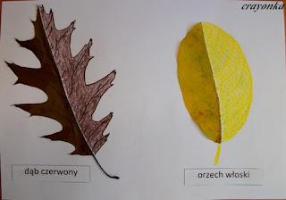 liście z dorysowaną kredkami i pisakami drugą połówką
