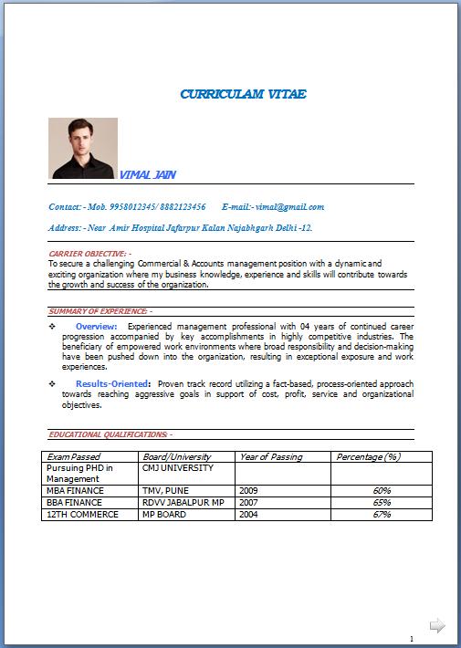 Ten Resume Format