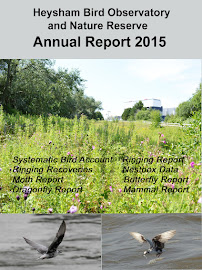 2015 HEYSHAM OBS REPORT AVAILABLE
