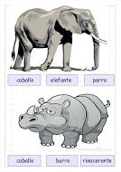 IMÁGENES  VOCABULARIO ANIMAL