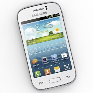 Samsung Galaxy Young S6310: Quick Review - Samsung Galaxy Young Fan