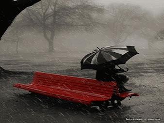 #20 Rain Wallpaper