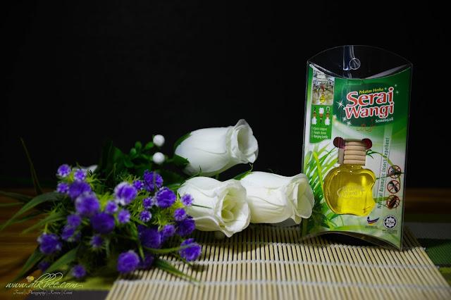 AFY Haniff Penyelesaian Masalah Serangga Di Rumah